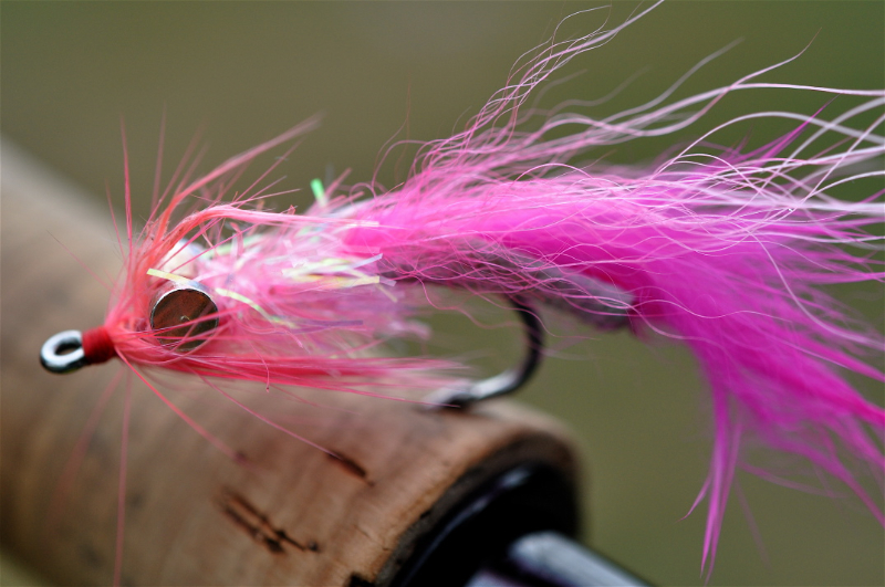 Pink Salmon Fly